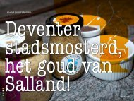Willem de Witte - overenuitdeventer.nl