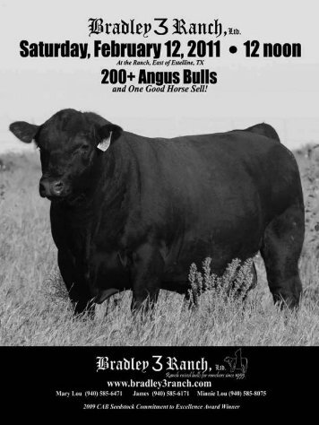 B3R WeSTeRn SWinG W446 - Angus Journal