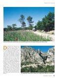 00 WOHNMOBIL & CARAVAN - Tischer - Seite 4