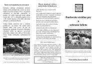 Pastierske strážne psy a ochrana šeliem - Medvede SK