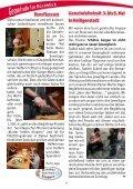 Gemeindebrief Jun-Jul 2013w - Zionsgemeinde - Seite 4