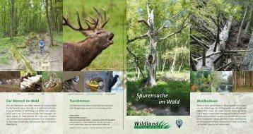 Spurensuche im Wald Spurensuche im Wald - wildland-bayern.de