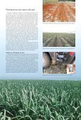 continuamente - Canal : O jornal da bioenergia - Page 7