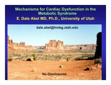 Mechanisms for Cardiac Dysfunction in the Metabolic Syndrome E ...