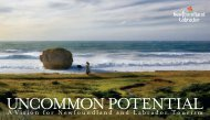 Uncommon Potential: A Vision for Newfoundland and Labrador ...