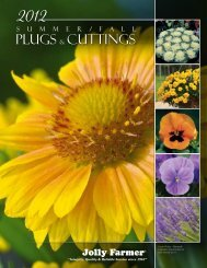 Plugs & Cuttings - Jolly Farmer Products