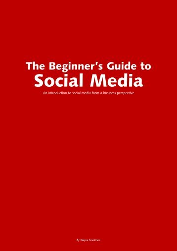 The Beginners Guide to Social Media - ConceptSL