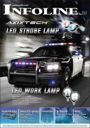 Newsletter Issue 2, 2011