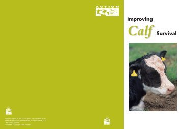 Improving calf survival - Compendium of Animal Health & Welfare in ...