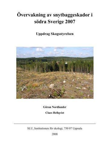 Övervakning av snytbaggeskador i södra Sverige 2007 - SLU
