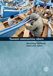 Tsunami communities reborn - PreventionWeb