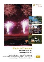 Rhein in Flammen 2013-August