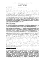 FASCIOLA HEPATICA Fermín V. Olaechea La Fasciolasis es una ...
