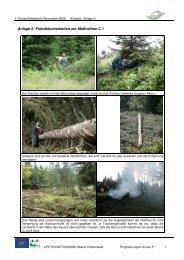 Anlage 5: Fotodokumentation zur Maßnahme C.1 - Hotzenwald LIFE