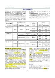 HERPESVIRUS - Sezione di Microbiologia