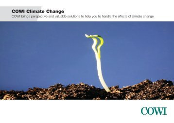 COWI Climate Change