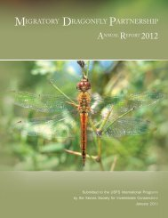 2012 MDP Annual Report - Migratory Dragonfly Partnership