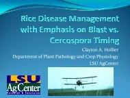 Disease Management with Emphasis on Blast versus Cercospora ...