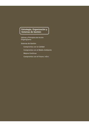 Estrategia, Organización y Sistemas de Gestión - Abengoa