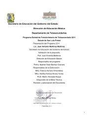 San Luis Potosí - Telesecundaria