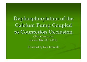 Dephosphorylation of the Calcium Pump Coupled to Counterion ...