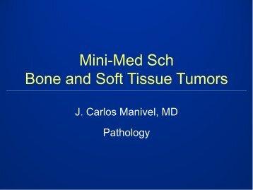 Mini-Med Sch Bone and soft tissue tumors - Rein in Sarcoma