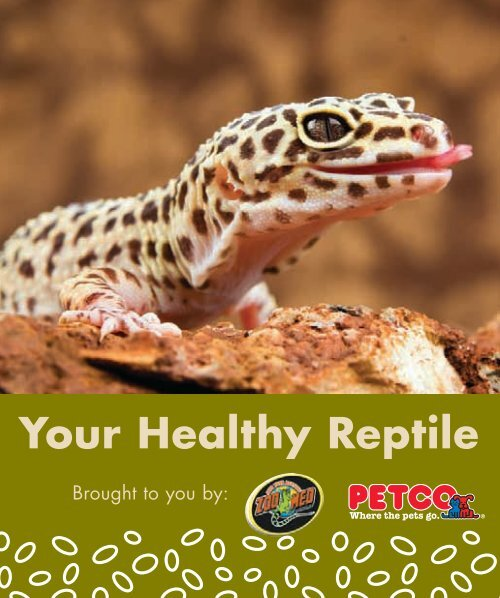 Your Healthy Reptile – Pet Supplies - Petco