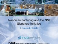 Nanomanufacturing and the NNI Signature Initiative - National ...