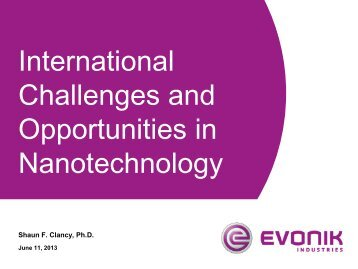 International Challenges and Opportunities in Nanotechnology