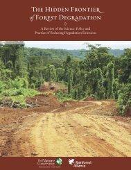 [C] The Hidden Frontier of Forest Degradation - Rainforest Alliance