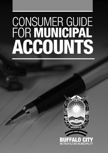 Municipal accounts - Buffalo City