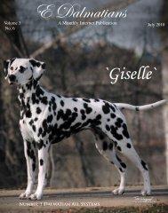Download July Edition in PDF - E Dalmatians