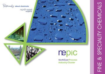 Fine & Speciality Chemicals (PDF) - NEPIC