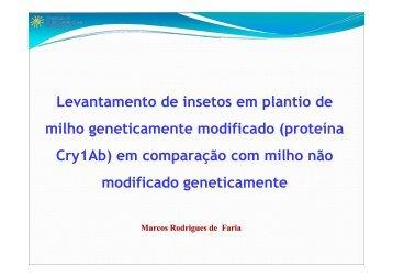 Eficiência de controle de milho Bt e efeitos sobre organismos ... - CIB