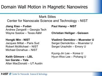Domain Wall Motion in Magnetic Nanowires - PiTP
