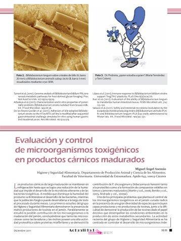 Evaluación y control de microorganismos toxigénicos en productos ...