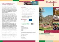 Strategien für die Entwicklung ländlicher Räume - Initiative ...