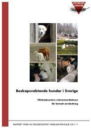 Boskapsvaktande hundar i Sverige - Viltskadecenters ...