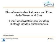 Sturmfluten in den Ästuaren von Elbe, Jade-Weser und Ems