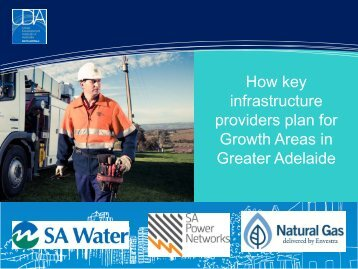 delivering the 30 Year Plan - UDIASA - Urban Development Institute ...