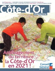 Décembre 2010 au format PDF - Conseil général de Côte-d'Or