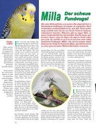 Der Artikel als PDF (1,32 MB) - Birds Online