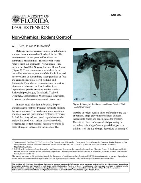 Non-Chemical Rodent Control - University of Florida
