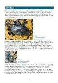 De kleine bijenkastkever Aethina tumida - Wageningen UR - Page 2