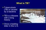 What Is TB? (857 kB PDF) -- Louis Sullivan