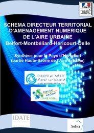 Télécharger la synthèse pour le Pays d'Héricourt - Syndicat mixte de ...