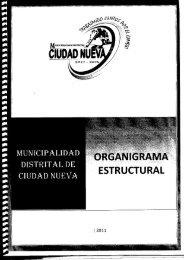 organigrama - Municipalidad Distrital de Ciudad Nueva