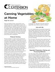 Canning Vegetables at Home - Wellness Proposals