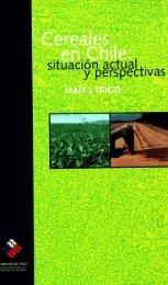 Cereales en Chile : situación actual y perspectivas : maíz y trigo