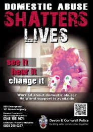 Domestic-abuse-shatters-lives-2014